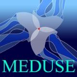 logo_meduse